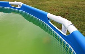 Eau verte de la piscine